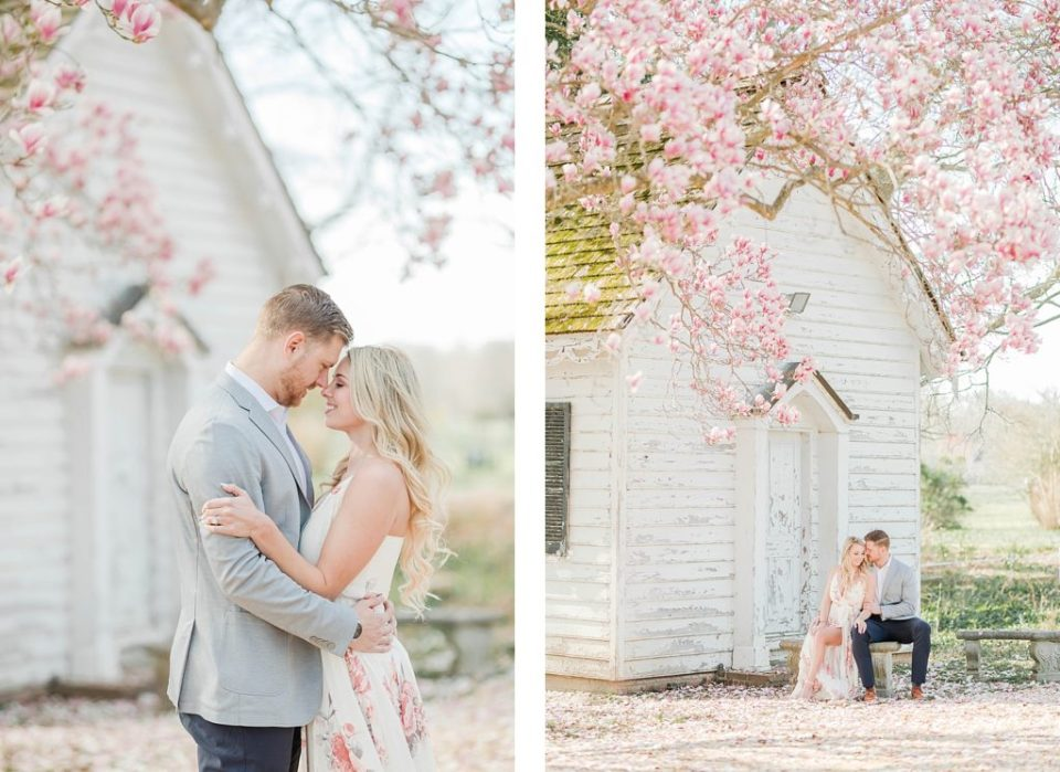 Couple sitting on a bench under cherry blossoms at Greenwell State Park for engagement session by Costola Photography