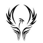 Рисунок профиля (MoDPhoenix)