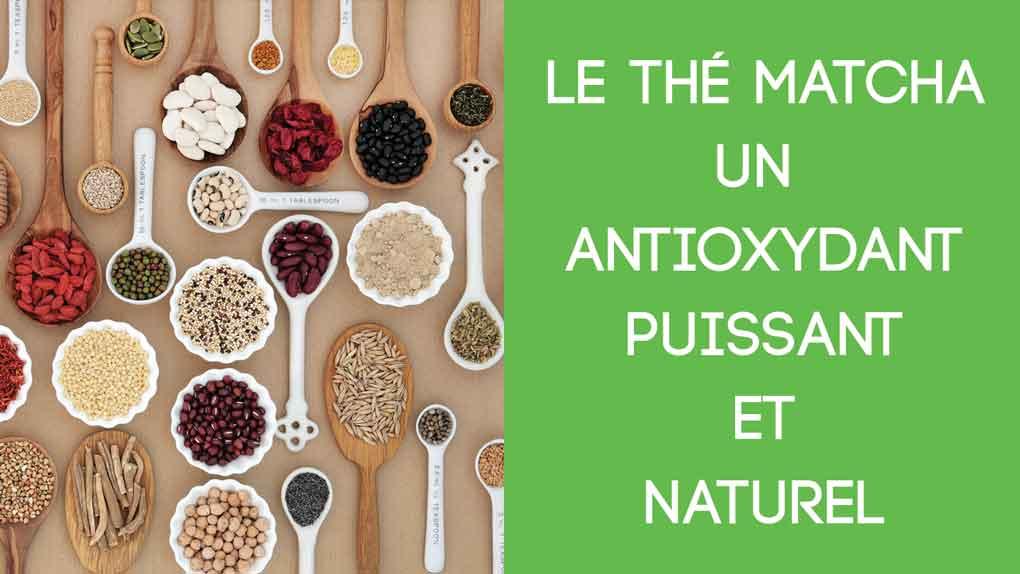 Le thé matcha: un aliment antioxydant puissant et naturel