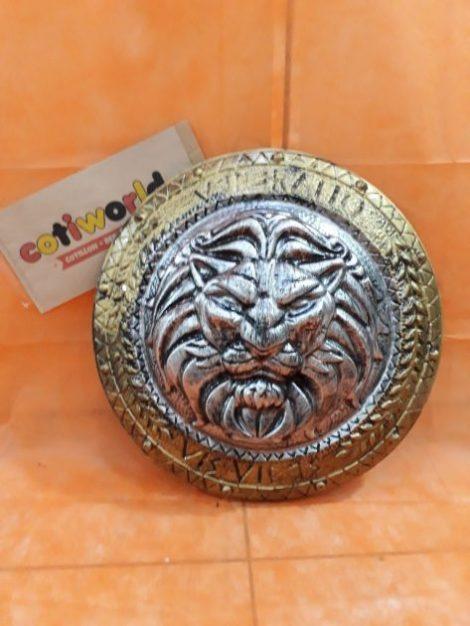 Escudo leon
