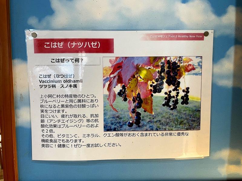 道の駅かみこあにご当地ソフト「ほおずきvsこはぜ」上小阿仁村特産8
