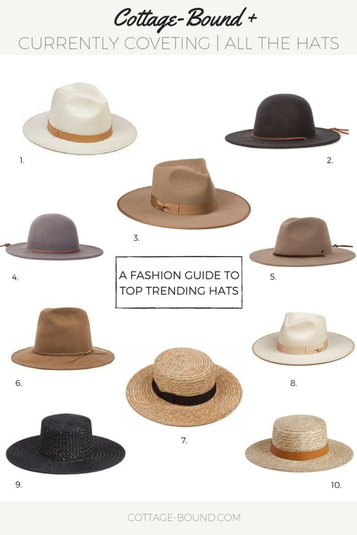 wide brim hats, straw hats, wool/felt hats