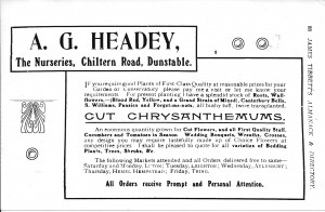 An advertisement for A G Headey and Sons.