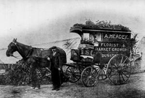 horsecar1t