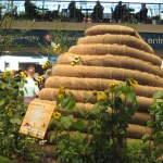 Philadelphia Flower Show….More Than Just An Event