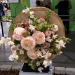 Philadelphia Flower Show…Ushering In Spring