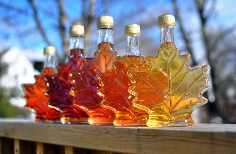 Resultado de imagem para maple syrup