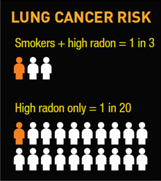 Lung Cancer Risk