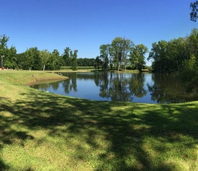 Camp Cotten | Adult Summer Camp