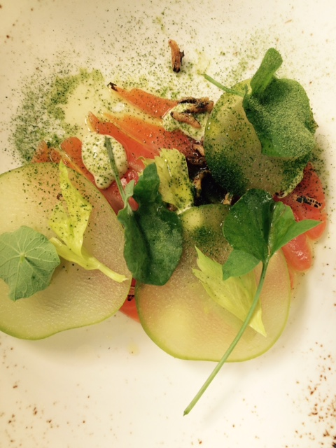 Starter: Cured Ocean Trout © S. Free