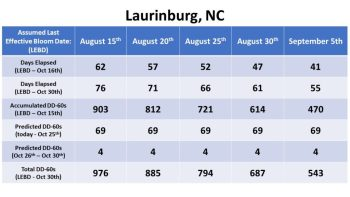 Effective bloom dates for Laurinburg