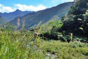 《新竹旅遊》你不知道的那羅部落~香草精油外銷全球,部落美景看不完~礦坑遺跡現場看、竹筒飯DIY好好味!
