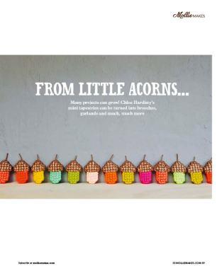 MMS58.acorns2 (1)