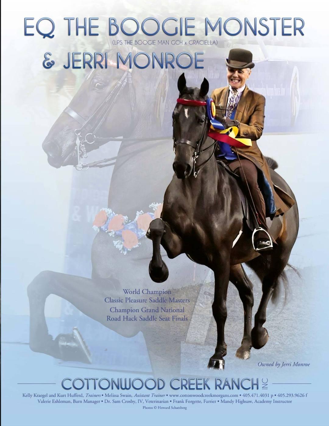 The Morgan Horse Dec 2016-3