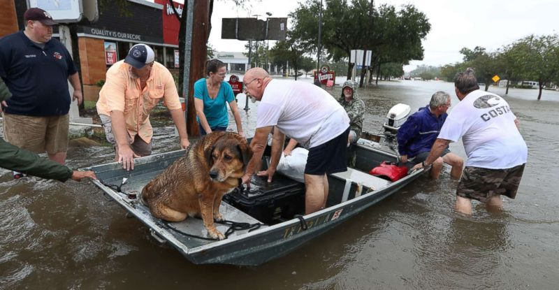 , Hurricane Relief: Government Assistance Helps Rebuild after Harvey and Irma