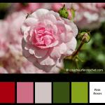 Color Inspiration for Spring