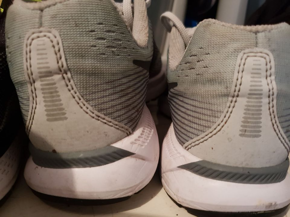 Nike Pegasus 34 Back