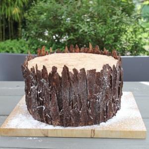 tree-trunk-cake-baumstamm-torte-coucoucake (15)