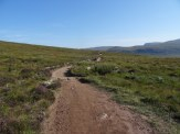 The well maintained track to Sandwood Bay. Very picturesque.