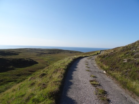 The road to the lighthouse (spot the dog)