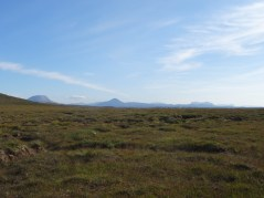Arkle, Ben Stack and Quinag (L-R) viewed across typical NW Sutherland bog.
