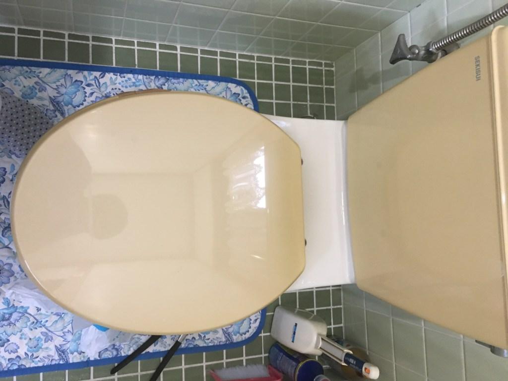 トイレ元の