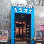 ヴォイス☆キャッツ安城店(安城コロナワールド内)