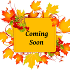 1 coming soon autumn