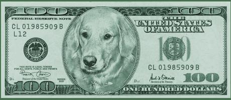 Doggie Dollah