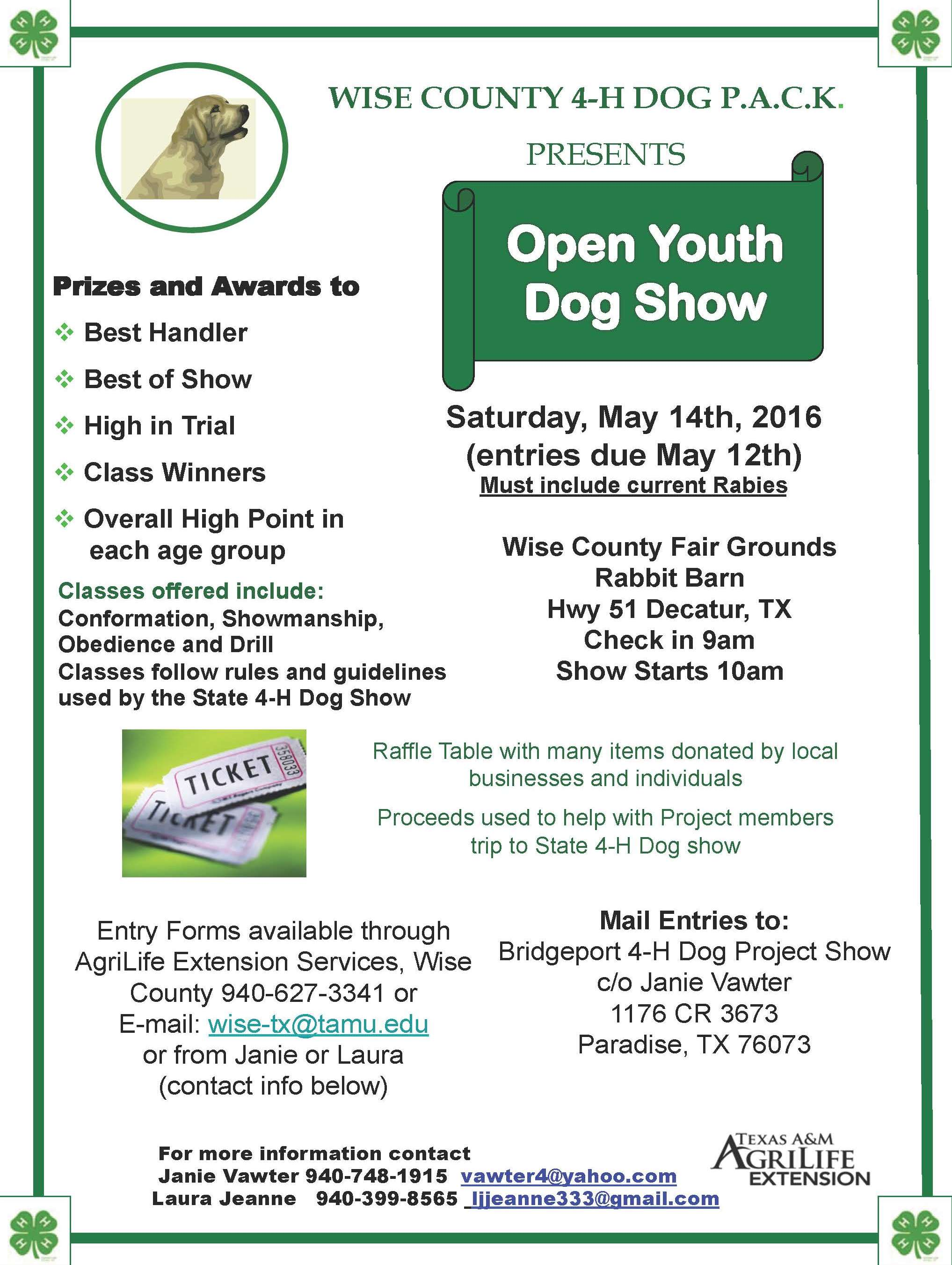 Wise County 4 H Dog Club Open Youth Dog Show