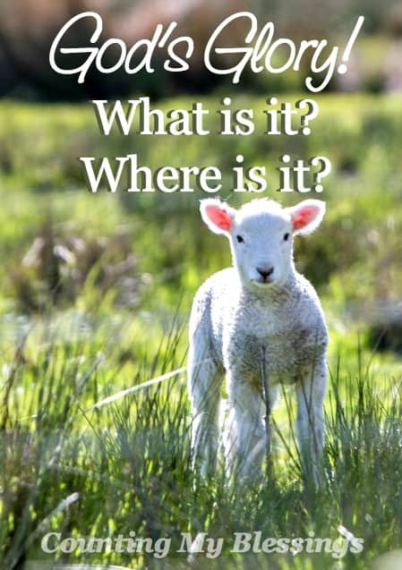 We talk about God's glory all the time, but what exactly is it? Moses asked to see it. Jesus revealed it. What is it? Can you see it?