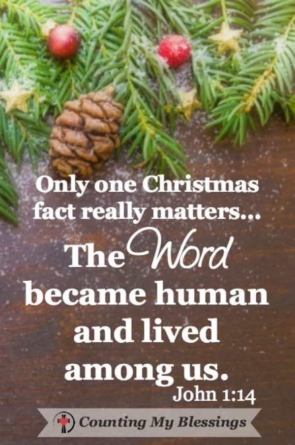 "Wow, surprise your family with #Christmas facts. Learn the history of traditions, top gifts over the years, and how to say, ""Merry Christmas"" internationally. #ChristmasFacts #CountingMyBlessings"