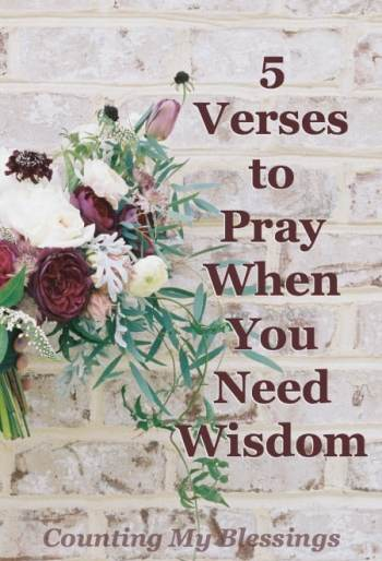 You're tired. You've done it your way long enough. You're ready for a change, but how? You know you need wisdom. These 5 verses and prayers will help.