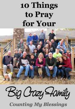10 Things to Pray for Your Big Crazy Family