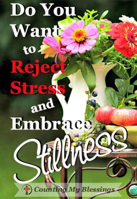 It's time to let go of busyness, stress, and anxiety; and embrace stillness by sinking down into the presence of the Lord. Will you join me?