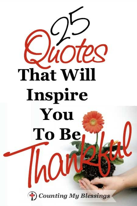 25 Quotes That Will Inspire You To Be Thankful – Counting My ...