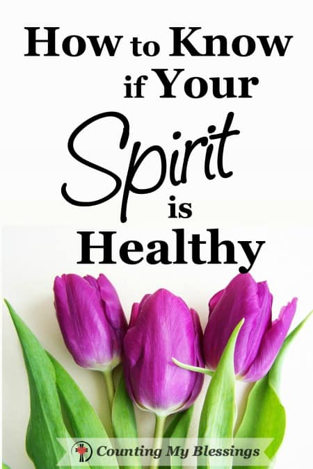 People who are spiritually healthy have better physical, social, and emotional health than those whose spirits are unhealthy? But what is a healthy spirit?