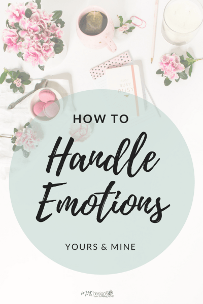 How to Handle Emotions, Yours and Mine by Michelle Skillern