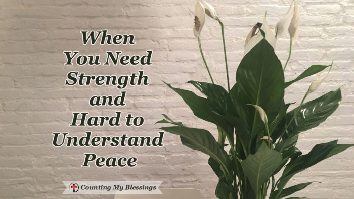 How I went from being a world-class worrier to having strength in and throughout a crisis and God's hard to understand peace to face each day with hope. #CountingMyBlessings #BlessingBloggers #GodsPeace #Faith #Bible #Scripture #Hope