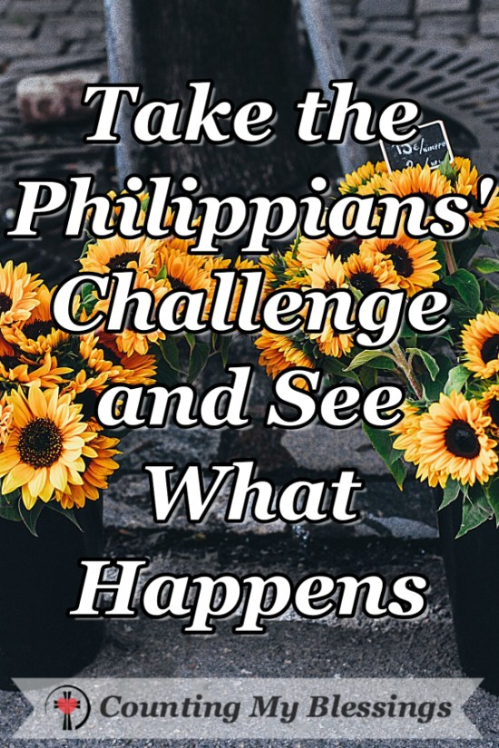 If divisive rhetoric is wearing you out, making you anxious, and maybe even depressing you ... take the Philippians' challenge and see what happens. #BlessingCounter #Faith #Hope