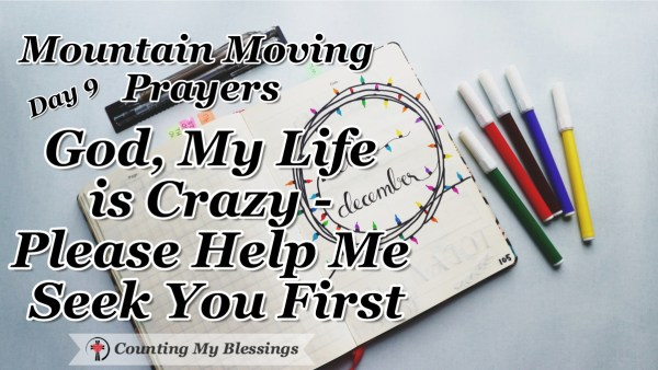 It seems like life is always busy - crazy busy! So, today I'm praying ... God, please help me seek You first! #Prayer #Faith #SeekFirst #MountainMovingPrayer #BlessingCounter