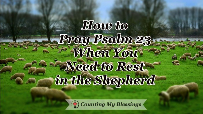 How you can pray Psalm 23 and learn to rest in God's provision and care, let go of anxiety and worry, and get the rest you desperately need. #Psalm23 #Prayer #Bible #Faith #CountingMyBlessings