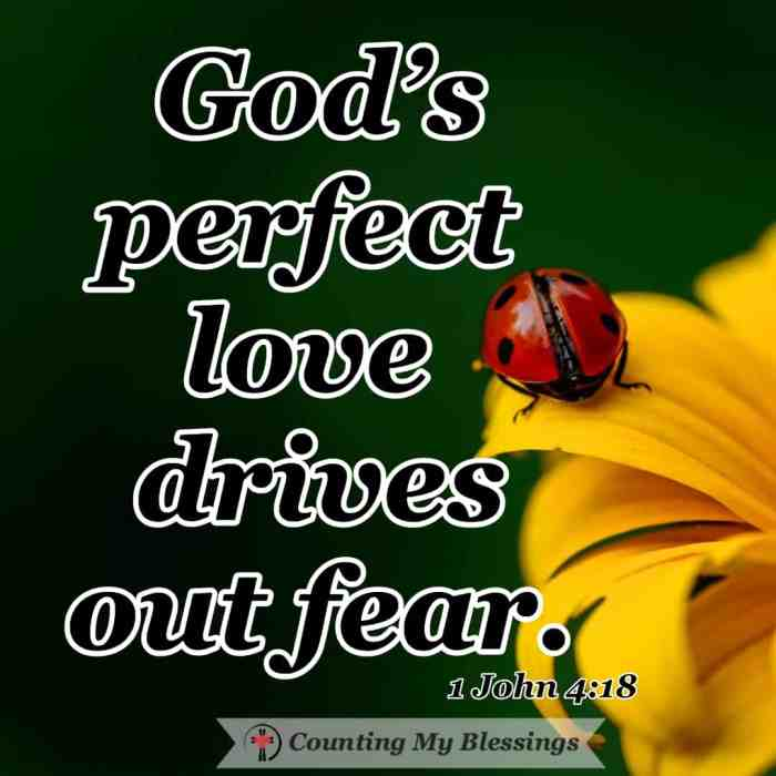 A people pleaser works hardest on the relationships they feel are most fragile out of fear but with God's help, you and I can be free of fear and live in love. #Relationships #Fear #God'sLove #MentalHealth #Recovery #Love