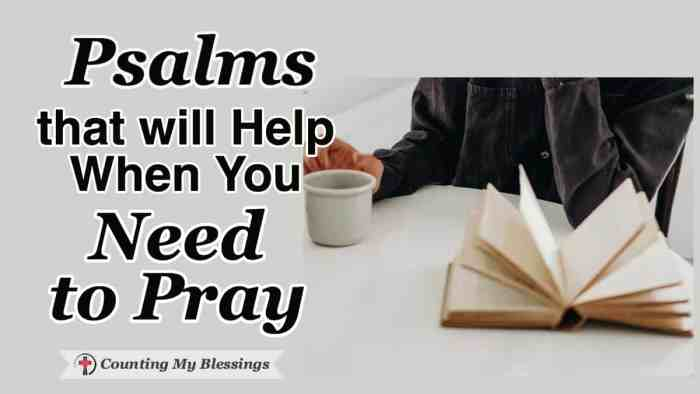 When you need to pray but emotions overwhelm you - it's helpful to pray the words of Scripture. That's why I love praying the honest emotions in Psalms. #Prayer #EmotionalHealth #Psalms #WWGGG #CountingMyBlessings