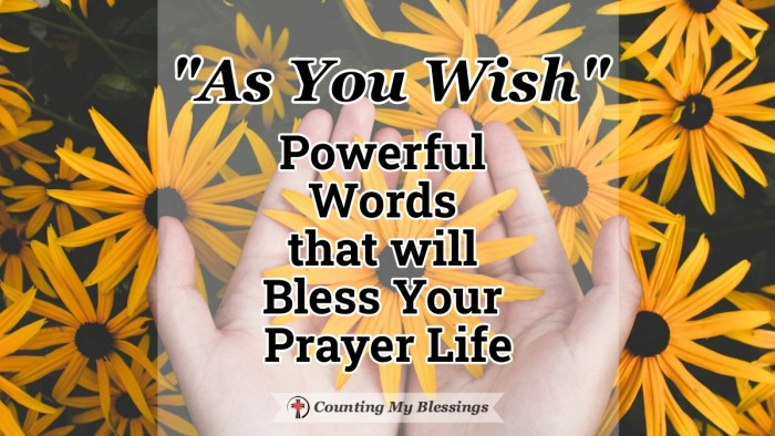 """As you wish"" are three powerful words to pray to commit to trusting God's goodness and love when we wait on Him to answer our prayers and meet our needs. #Prayer #PrincessBride #Asyouwish  #TrustGod'sLove #CountingMyBlessings #WWGGG"