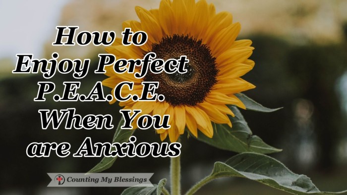 There is always plenty of things to make us anxious We all want that perfect peace the Bible talks about. Here are 5 helpful ways to make that happen. #BibleStudy #God'sPeace #Faith #CountingMyBlessings #BlessingBloggers #WWGGG