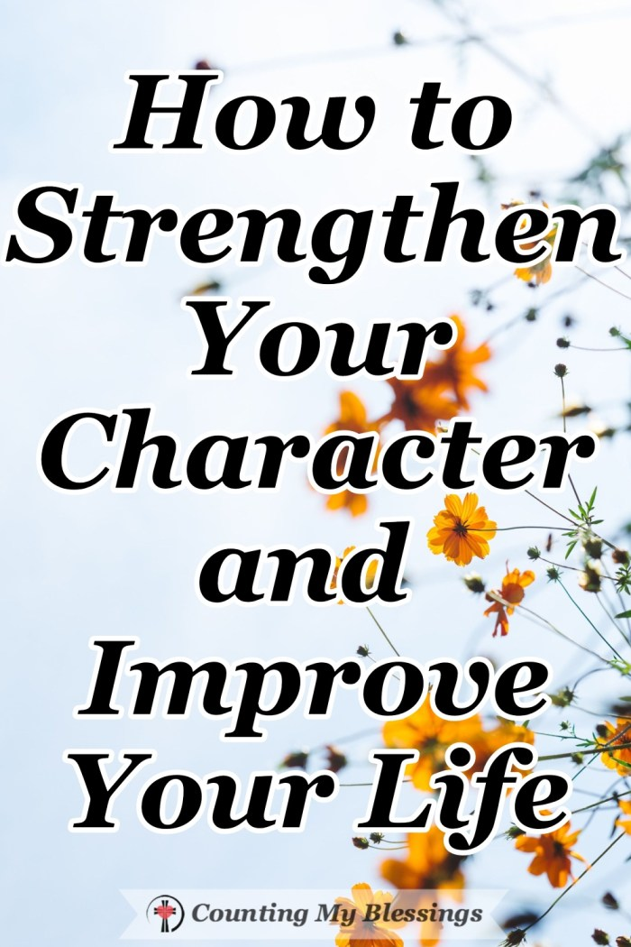 How is your impulse control? What rules do you follow? Are any of them non-negotiable? Would you like people to respect you more? Would you like to respect yourself more? Good news! It's not too late. It's never too late. You can take steps to strengthen your character. #Character #BibleStudy #KnowYourself #BlessingBloggers #WWGGG