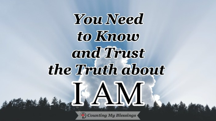 """At Jesus' trial, He was asked if He was the Messiah. His answer. """"I AM."""" He declared that He came to save God's people and He will come again in glory. #Jesus #Hope #IAM #BibleStudy #CountingMyBlessings #BlessingBloggers #WWGGG"""