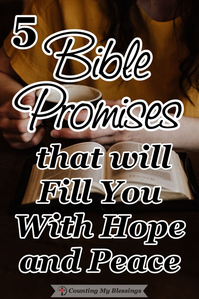 Romans 8 overflows with Bible Promises—words of hope and peace that assure us of God's love and help us focus on the things that will bless and encourage. #BibleQuotes #Promises #Faith #Blessings