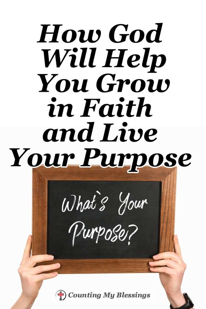 I wonder how much time we waste looking for something to believe in and our reason for living - when God has a plan for both our faith and our purpose.  #Faith #Goals #BibleStudy #BlessingBloggers